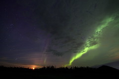 Cloudy aurora borealis (She Likes Odd) Tags: aurora auroraborealis cloudy clouds nightsky night partlycloudy spaceweather northernlights thompson manitoba canon60d tokina tokina1116mm canonphotography canoneos60d nightphotography astrophotography