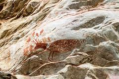 Pintura rupestre (Johnny Photofucker) Tags: cabeadeboi pinturarupestre pintura desenho pittura painting antigo old vecchio disegno pedra stone rock pietra