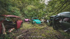 Mostly Beetles... (As The Light Slowly Fades...) Tags: urbex rust cars derelict decay abandoned forgotten beetles