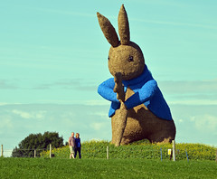big bunny (midcheshireman) Tags: statue straw rabbit cheshire
