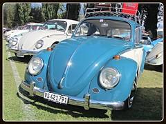 VW Beetle (v8dub) Tags: vw beetle volkswagen fusca maggiolino kfer kever bug bubbla cox coccinelle schweiz suisse switzerland german pkw voiture car wagen worldcars auto automobile automotive aircooled old oldtimer oldcar klassik classic collector