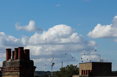 Big face in the clouds (Sculptor Lil) Tags: canon700d dslrsingleexposure london cloudface clouds handheld pareidolia pigeons sky weather