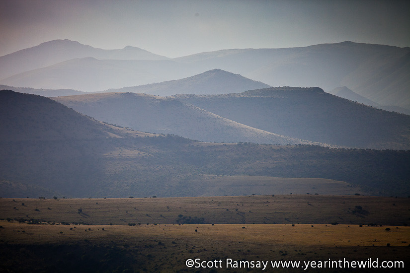 Mountain Zebra National Park - South Africa