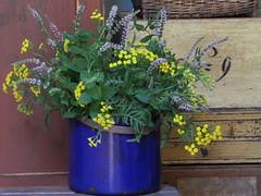 Munt en boerenwormkruid (Swaalfke) Tags: bloemen