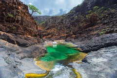 swimming pool in natural rock at wadi dirhir(Wadi Ayhft), dixam, plateau, soqotra island, unesco, yemen (anthony pappone photography) Tags: pictures travel trees plants color tree nature colors digital canon lens landscape island photography photo flora colorful paradise colours colore foto natural image felix natur picture natura best unesco arabia yemen fotografia albero paesaggio paradiso reportage photograher pianta dracaenadraco arabo yemeni phototravel yaman dracena draceana socotra arabie arabiafelix اليمن arabianpeninsula cinnabari يمني 也門 سقطرى сокотра alyaman yemenpicture yemenpictures eos5dmarkii 索科特拉 alberodelsanguedidrago dracenacinnabari ソコトラ सोकोट्रा