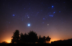 Orion and Jupiter over the Forest (lrargerich) Tags: sky night belt nightscape cluster nebula astrophotography m45 orion m42 betelgeuse rigel planet astronomy jupiter taurus constellation asteroid pleiades vesta aldebaran hyades september2012