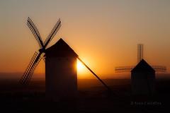 Puesta entre molinos (87 EXPLORE - 28 - 09 - 2012) # 10 (Jose Casielles) Tags: color luz sol cielo puestadesol puesta molinos yecla aspa campodecriptana fotografasjosecasielles