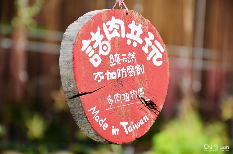 多肉one05.jpg
