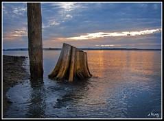 Puget Sound (sking5000) Tags: county washington stump sound wa puget everett possession snohomish sking5000