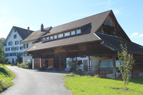 Trail from Horgen to Wädenswil via Landgasthof Halbinsel Au