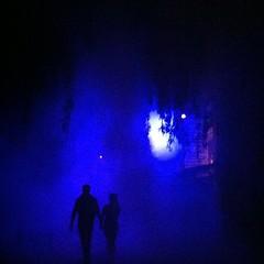 Amazing shot #scary #horror #halloween