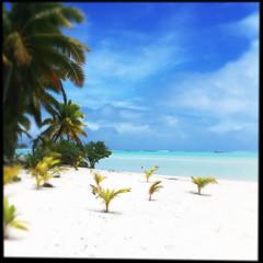 Cook Islands holiday. (lumierette) Tags: holiday beach paradise lagoon noflash southpacific cookislands rarotonga aitutaki hipstamatic loftuslens sugarfilm