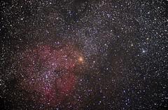 IC1396 in Cepheus (Astronewb2011) Tags: elephant nebula trunk cepheus ic1396 Astrometrydotnet:status=solved d5100 Astrometrydotnet:version=14400 astronewb smarteq Astrometrydotnet:id=alpha20121075289419