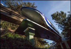 Monorail Monday - (Edition 51) (Coasterluver) Tags: mono disneyland disney monorail monorailblue andrewkirby monorailmonday coasterluver