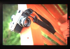 Through the Viewfinder (100Dreday) Tags: atlanta film glass canon photography asahi pentaxk1000 manual vignette ricoh viewfinder iphone shutterpriority fd50mm14 35mmfullframe iphoneography iphone4s ae1filmcamera xrrikenon50mm17