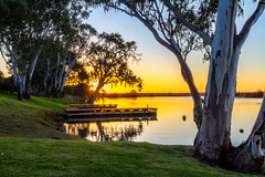 River Dreams (*ScottyO*) Tags: whitesands murrayriver murraybridge murray river water grass trees jetty dock pier buoy wood blue yellow green reflection eucalyptus leaves branches nature landscape riverscape sunset goldenhour evening dusk winter outdoor southaustralia sa australia