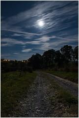 Weg in het maanlicht (HP016024) (Hetwie) Tags: nature auvergne frankrijk weg road pad natuur maan moon lachaissedieu hauteloire