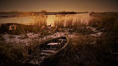 a heart for dithmarschen (yakkay43) Tags: nordsee fischerboote lifestyle landschaft marode meer meldorf miele outdoor motive dithmarschen felder colour streetfotografie sonnenuntergang kunst galerie kste