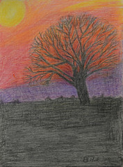 Sunset & Tree Silhouette (BKHagar *Kim*) Tags: bkhagar moms art artwork drawing scribble color pencil pencils bettyhardage artist