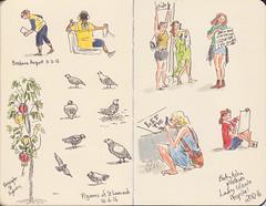Page 35 (tanaudel) Tags: illustration drawing sketchbook moleskine fabercastell pittartistpens pigeons birds lamp lantern protest demonstration