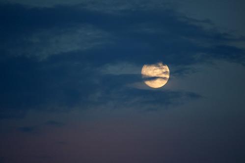 Sturgeon Moon _9430