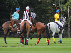 Guards Polo Club Aug 2016 31 (Timelapsed) Tags: sport ourdoors horseback hourse windsor windsorgreatpark