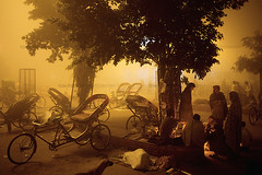 tragedy (inderkandhola) Tags: airpollution bicycle city class cold color colour dawn fire fog friends friendship gamble gambling horizontal india indian informalemployment landscapeorientation leisure mangroup mengroup night outdoor pollution poor recreation shawl smog southasia southasian streetdweller streetscene transport urban weather winter workingclass yellow moradabad uttarpradesh