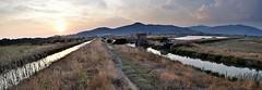 Tramonto in padule - Sunset in marsh (Jambo Jambo) Tags: tramonto sunset panorama landscape palude padule swamp marsh diacciabotrona riservanaturalediacciabotrona castiglionedellapescaia grosseto maremma maremmacountryside maremmatoscana toscana tuscany italia italy nikond5000 jambojambo