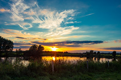 Pegasus (Civilis Brutus) Tags: sunset zonsondergang riet reed grass gras water reflection reflectie wolken sluierwolken cirrus clouds cloud sky lucht landschap landscape pond kolk paardenkolk diepenveen deventer ijssel uiterwaarden forelands nikon p7800 fence