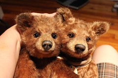 Two Cute Faces (Desertmountainbear) Tags: realisticbear teddybear bear bearcub ooak handmade wip artistbear joannelivingston desertmountainbear