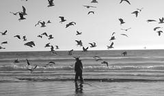 THE FISHERMAN MOMENT (Honevo) Tags: honevo hnevo portugal fisherman moment ocean