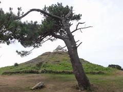 Tumulis Carnac (Codos Traumreisen) Tags: dsctx10 st michel carnac bretange tumuli ancient place celtic peilmarke horizontal astronomie alter platz