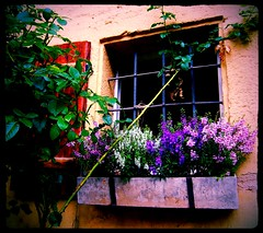Flower Window (Django_Leinfelden) Tags: flowers casa fenster deco excursion historie musberg siebenmhlental toplistthebestof interestingnessbyflickr tglich20neuebilder eslelsmhle