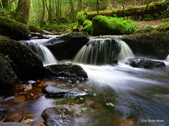 Little  Waterfall in Birnam Glen. (eric robb niven) Tags: river scotland waterfall glen dunkeld birnam thegalaxy inchewan ruby10 lumixtz18 ericrobbniven
