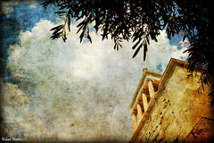 The Temple of Athena Nike (Nikos Niotis) Tags: trees sky sculpture tree art leaves architecture greek ancient place roman spirit centre culture center athens greece classical monuments acropolis olivetree attica athenian zappeion oliveleaves adrianos historicalcenter classicalperiod civilation rememberthatmomentlevel1 rememberthatmomentlevel2 adrianosgate