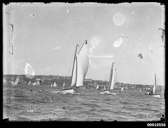 Sloops race, Sydney Harbour