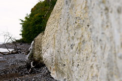 Ruegen - Kreidefelsen (M. von Ruhm) Tags: nationalpark rgen ruegen kreidefelsen chalkcliff