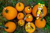 more pumpkins (sugarelf) Tags: pumpkin october crochet blythe amigurumi
