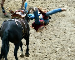 Thrown (5of7) Tags: rodeo bucking horse cowboy action animal person sports blur jump calgarystampede cyunanimous challengewinner challengeyou intheair hurt challengeyouwinner pregamewinner pregamechallenges motion male left nature yourockwinner yourockunanimous yourockchallenges frombehind cy2eligible 15challengeswinner 15challenges thepinnaclehof tphofweek189 thepinnaclechallengegroup herowinner superherochallenges gamewinner human 10wins a3b fav 14wins rural exposure 2fav