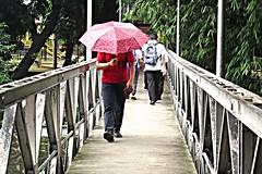 snapshots at a bridge (DOLCEVITALUX) Tags: snapshots bridge people everydaypeople kids creek canonpowershotsx50hs