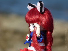 Standing watch by the sea (Wasurenagusa / Nox) Tags: little dal ciel tina obitsu