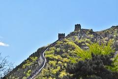 Long way up...the Great Wall of China (stevelamb007) Tags: china beijing greatwallofchina steps stevelamb nikon d7200 nikkor18200mm historic history