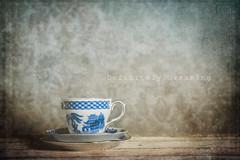 Simplicity (DefinitelyDreaming) Tags: vintagechina vintage teacup cupsaucer simple textures 2lilowls ordinary