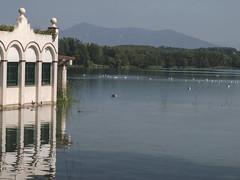 Paissatge a l'estany