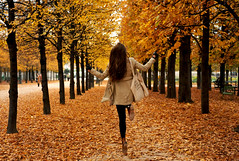 (E.Hunt.) Tags: trees leaves gold golden autumn fall paris line yellow burst colour glorious jump girl frolick hair joy carefree weightless contrast bold nature tuileries garden alley lane corridor