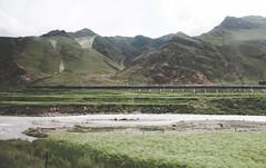 IMG_1174 (chungkwan) Tags: namco tibet religion buddha travel nature world life canon sigma