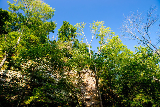 Bluffs of Beaver Bend Nature Preserve - August 26, 2016