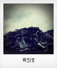 """#DailyPolaroid of 11-8-16 #318 • <a style=""""font-size:0.8em;"""" href=""""http://www.flickr.com/photos/47939785@N05/29391139970/"""" target=""""_blank"""">View on Flickr</a>"""