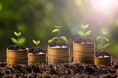 (Innovation.ca) Tags: banking makingmoney savings investment inspiration prosperity wages bankdepositslip diagram graph coin currency working backgrounds wealth success planning beginnings improvement development growth concepts greencolor ideas business finance leaf tree plant sunlight chart dollar accountancy