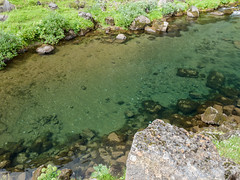 Clear water (James E. Petts) Tags: iceland flowing polariser stream water thingvellir